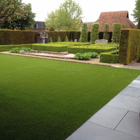 35mm 16800 Natural Looking Artificial Turf