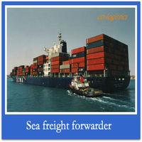 shipping container from china to HALDIA---Gofin