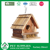 birds farming falcon birds for sale swiftlet bird nest