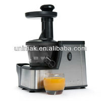 Mini Slow Juicer
