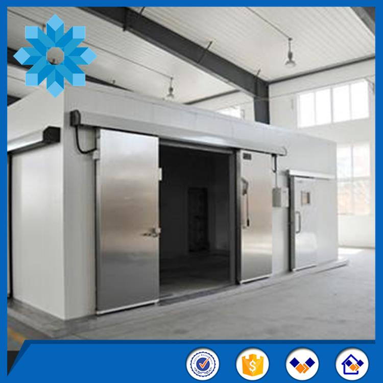 Hot selling -40c blast freezer cold room/cold storage with great price