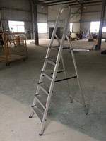 Lightweight aluminum ladder