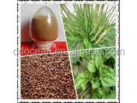 Supply high quality Plantago Psyllium Seed extract powder on hot selling !!