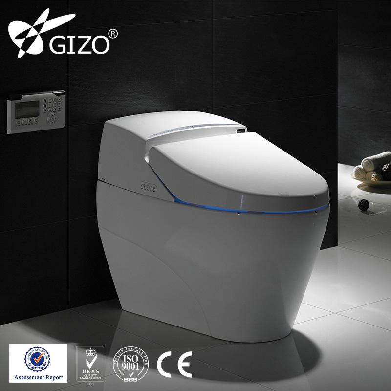 Toto Intelligent Bathroom Water Closet Toilet Toto