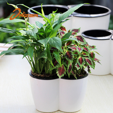 Hot Sale And High Quality Outdoor and Indoor PP Decorative Plant Pot Plastic Flower Pot