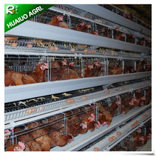 Poultry farm Automatic Chicken Layer Cage For Sale In Philippines