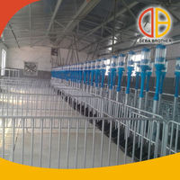 Poultry equipment galvanized sheep/goat/pig farm gates
