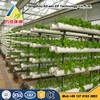 Low Cost Hydroponics System Activity Seedbed
