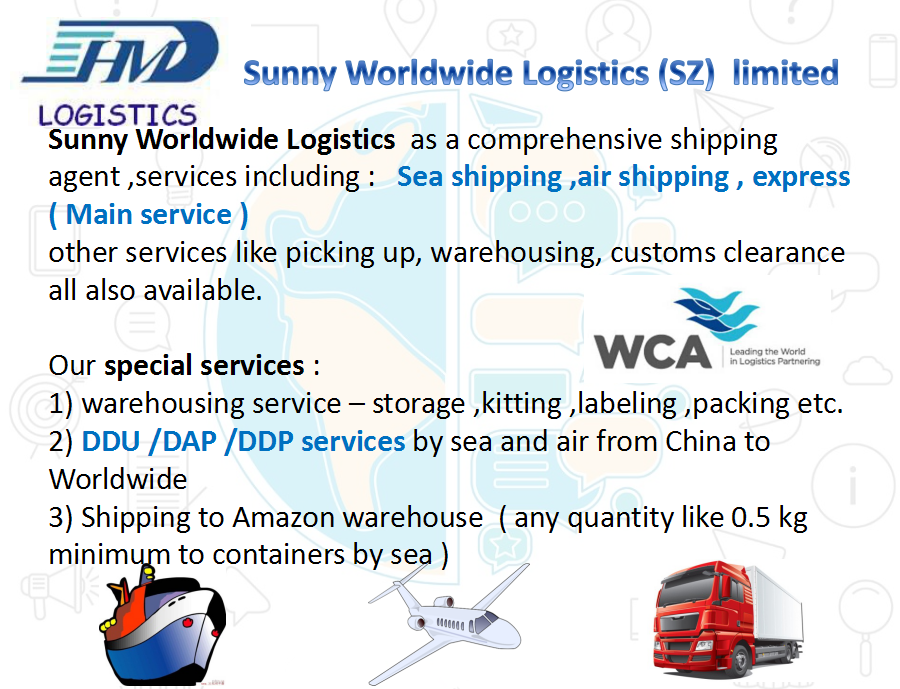 LCL FCL Door to door delivery service sea freight forwarder agency from china to BELIZE CITY