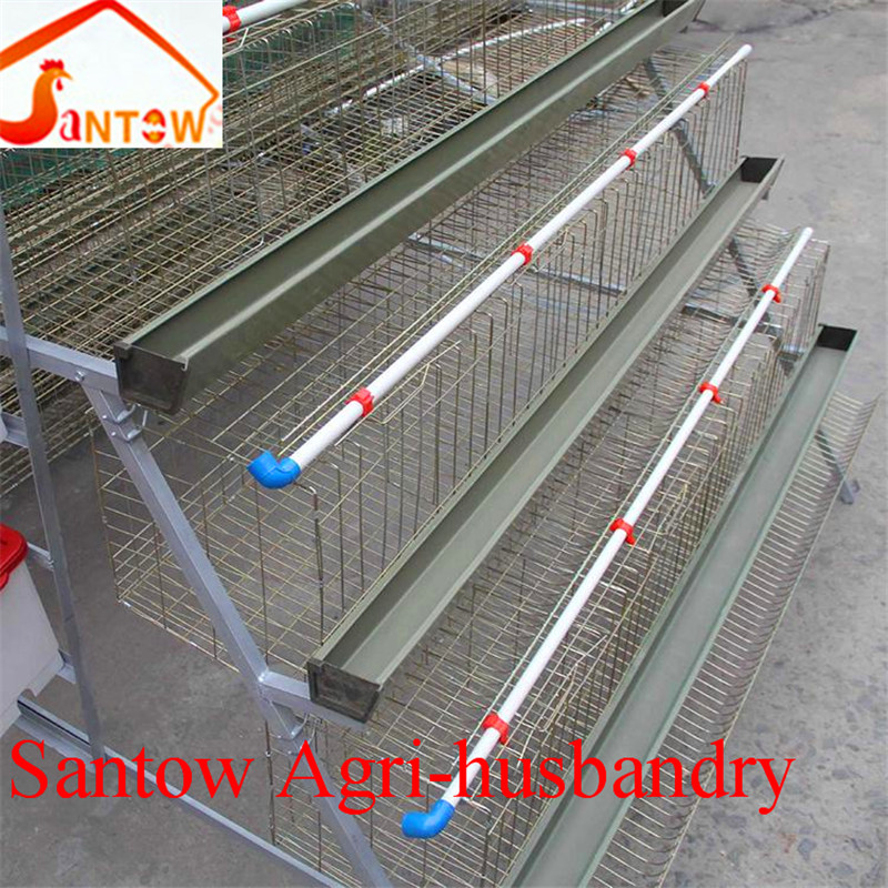 design layer chicken cage for poultry farm/shed