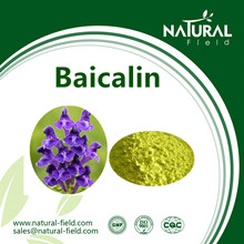 baicalin powder.jpg