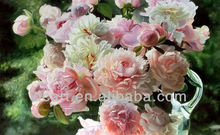 famous pink rose flower oil painting for decro