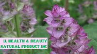 India's No.1 Best Product of Natural Clary Sage Essential Oil