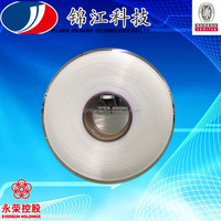 Pa 6 FDY 40D/12F BR/SD/FD Nylon Filament Yarn