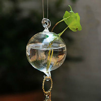 hanging glass vase with two hook