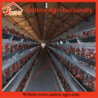 international standard broiler cage / chiken poultry farm construction