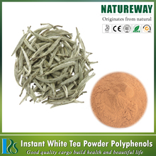 Natural water soluble white tea polyphenols 98%,white tea extract