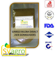 24%/6% Ginkgo Flavonoids light-yellow powder Ginkgo extract