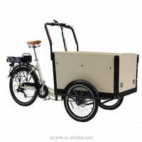 Woldwide hot sale cargo tricycle made in china