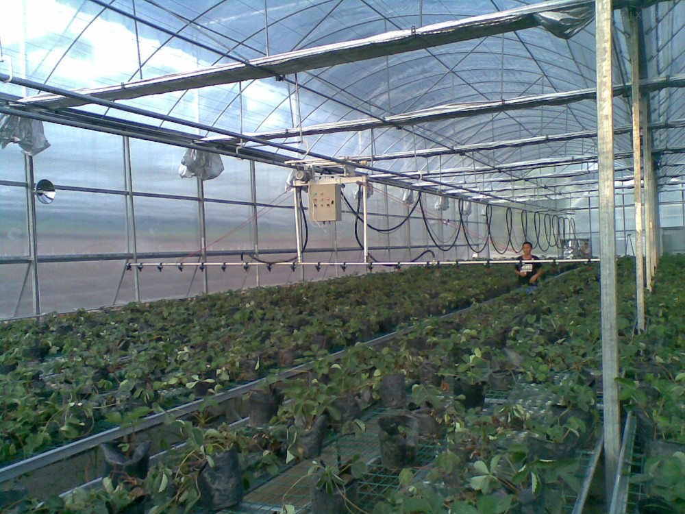 Temporary Irrigation System : Agricultural automatic farm portable sprinkler irrigation