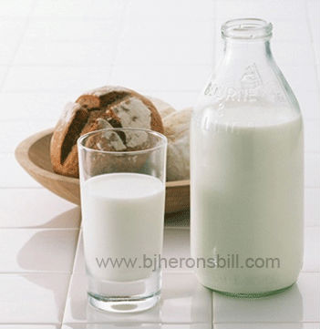 fresh milk flavour for dairy product