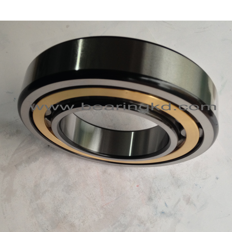 china high quality bearing strip roller nu202