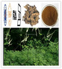 Free SampleTriterpene Glycosides2.5~8 % Black Cohosh P.E. CAS NO: 8047-15-2 Actaea racemosa plant extract