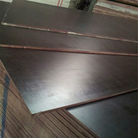 18mm Black Film Faced Plywood Manufacture