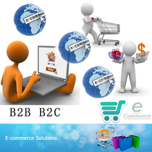 B2B b2C C2C ecommerce website design and development for America