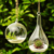 Clear Glass Vase Hanging Plant Terrarium Display Glass Tabletop Succulent Air Plant Planter Globe
