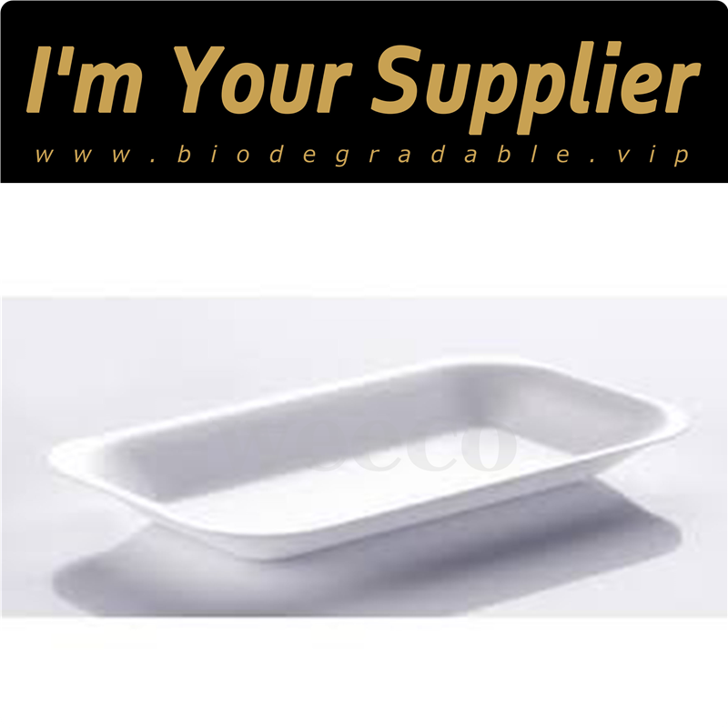 Compostable disposable plant fiber dish for party bagasse plate manufacturer