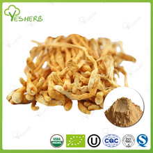 ISO factory Water soluable king of cordyceps powders cordyceps powder for health