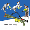Hot sell pet training Launcher Gun, ABS tennis ball gun for dog