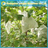 Environmental Protection Agriculture Spun-Bonded Fabric High Quality Fruit Bagging Nonwoven Drawstring Bag