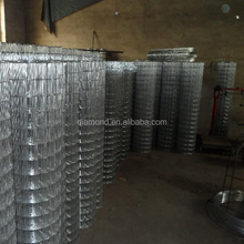 Hot dipped 2x2 Galvanized Welded Wire Mesh