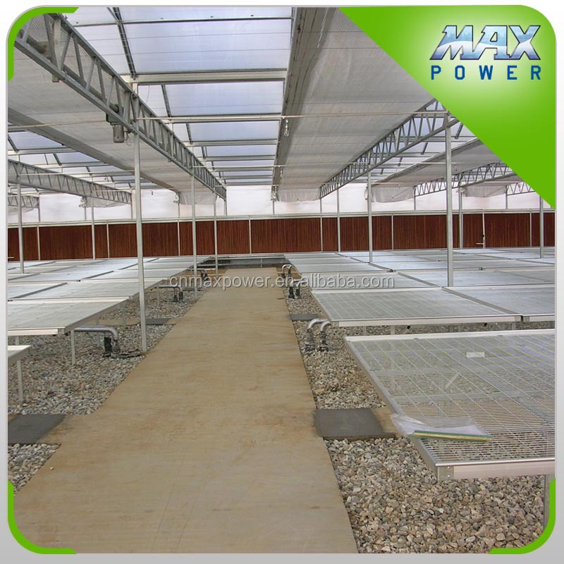 Horticulture Cheapest and Best Quality Greenhouse Rolling Benches
