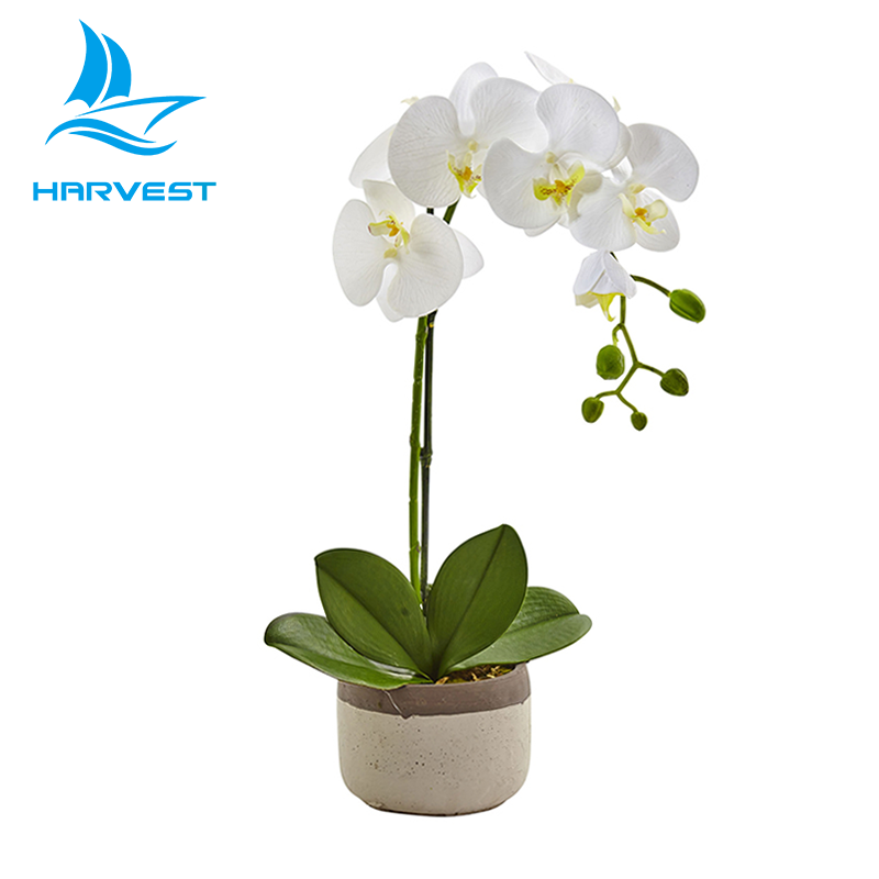 White Phalaenopsis Potted Artificial Orchids Plants