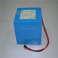 Headway lifepo4 36v 20Ah battery pack, 48v 40Ah with built in bms