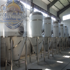 Stainless Steel Brewery CIP System Beer Brewing Equipment