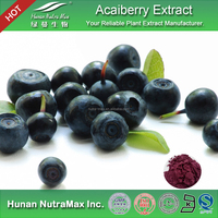 Acai Powder Extract , Acai P.E. , Natural Acai Extract 4:1 5:1 10:1 20:1