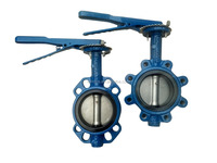 China API 609 cast iron LUG type butterfly valve manufacturer