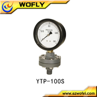 hydraulic all plastic diaphragm pressure gauge