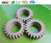 Natural 100% Virgin PEEK Plastic Molding Gear PEEK Spur Gear