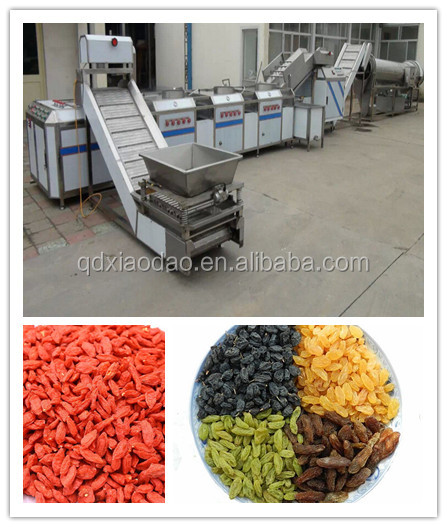 currant processing line / raisin processing machine / cleaning and drying line