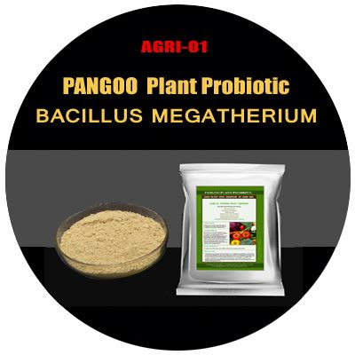 Plant growth promoting rhizobacteria AGRI-01 Plant Grower best fertilizer for clay soil