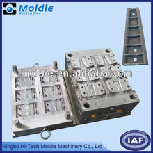 China Professional Plastice Mould Industry