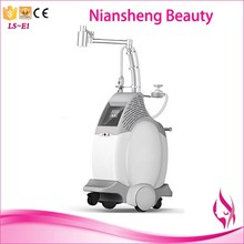 Vertical freeze fat reduce / weight loss / body shaping machine For Summer Hot