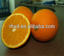 wholesale orange seeds for sale with great price