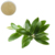 Best quality green olive leaf extract hydroxytyrosol 5 mg anti inflammatory capsules hydroxytyrosol powder