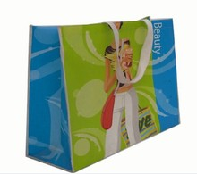fasion style non woven carry bag